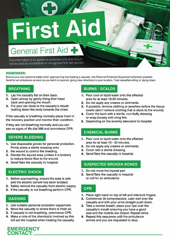 First aid workplace 420x594mm poster