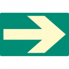 Way finding floor marker 175x110mm photoluminescent