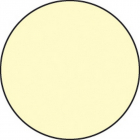 Photoluminescent anti-slip circles 75mm dia pack of 20