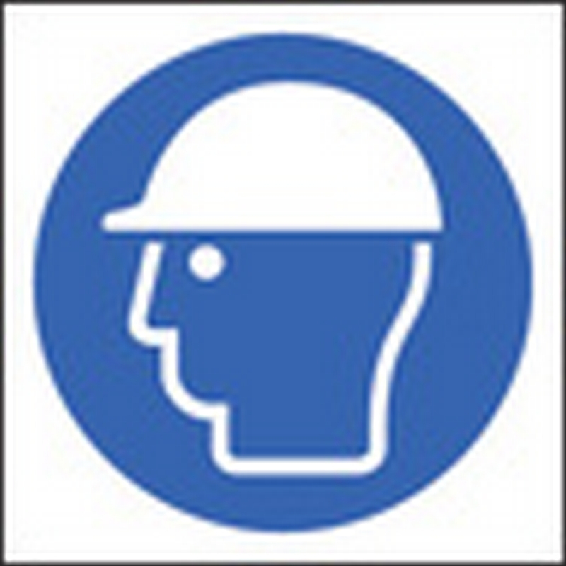 100 S/A labels 50x50mm safety helmet